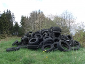 c'est ça des pneus verts ?  vu à Fix St Geney - Joël
