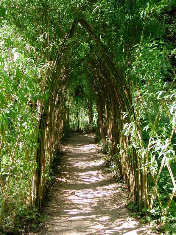 Le jardin extraordinaire du vallon du villaret strada for Jardin extraordinaire