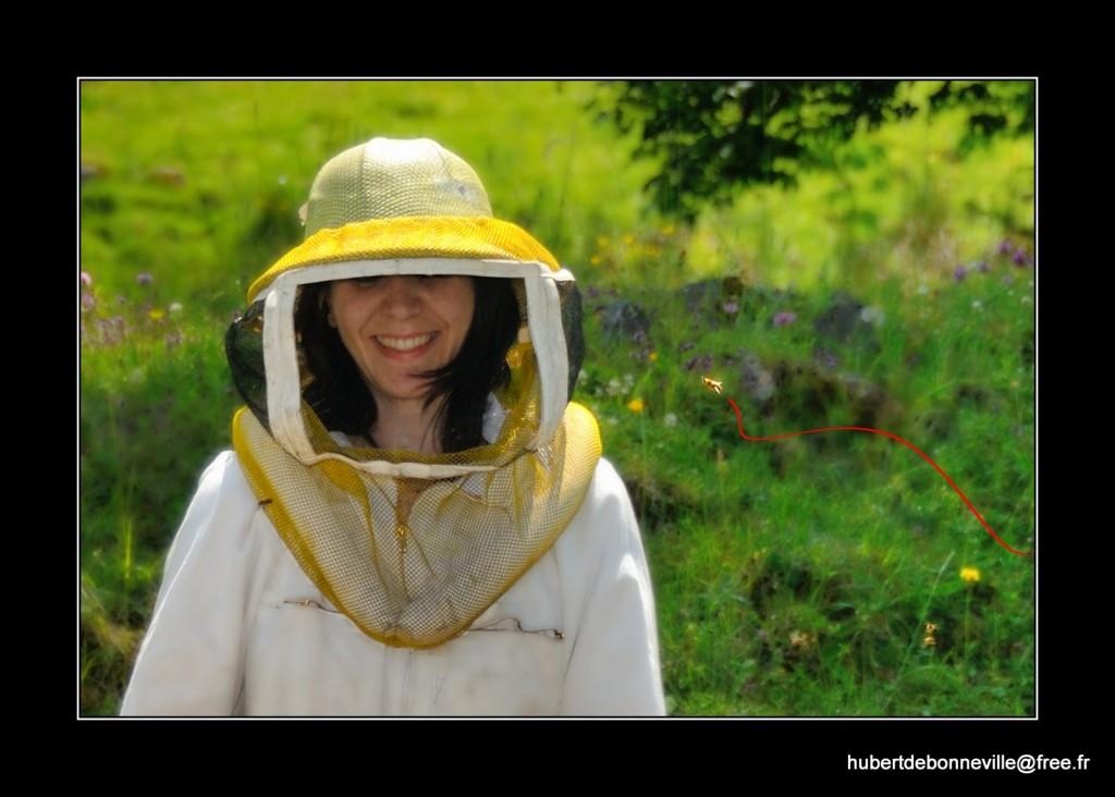 H2B_0150_nx2_Lorene_1_CAD_Bee2