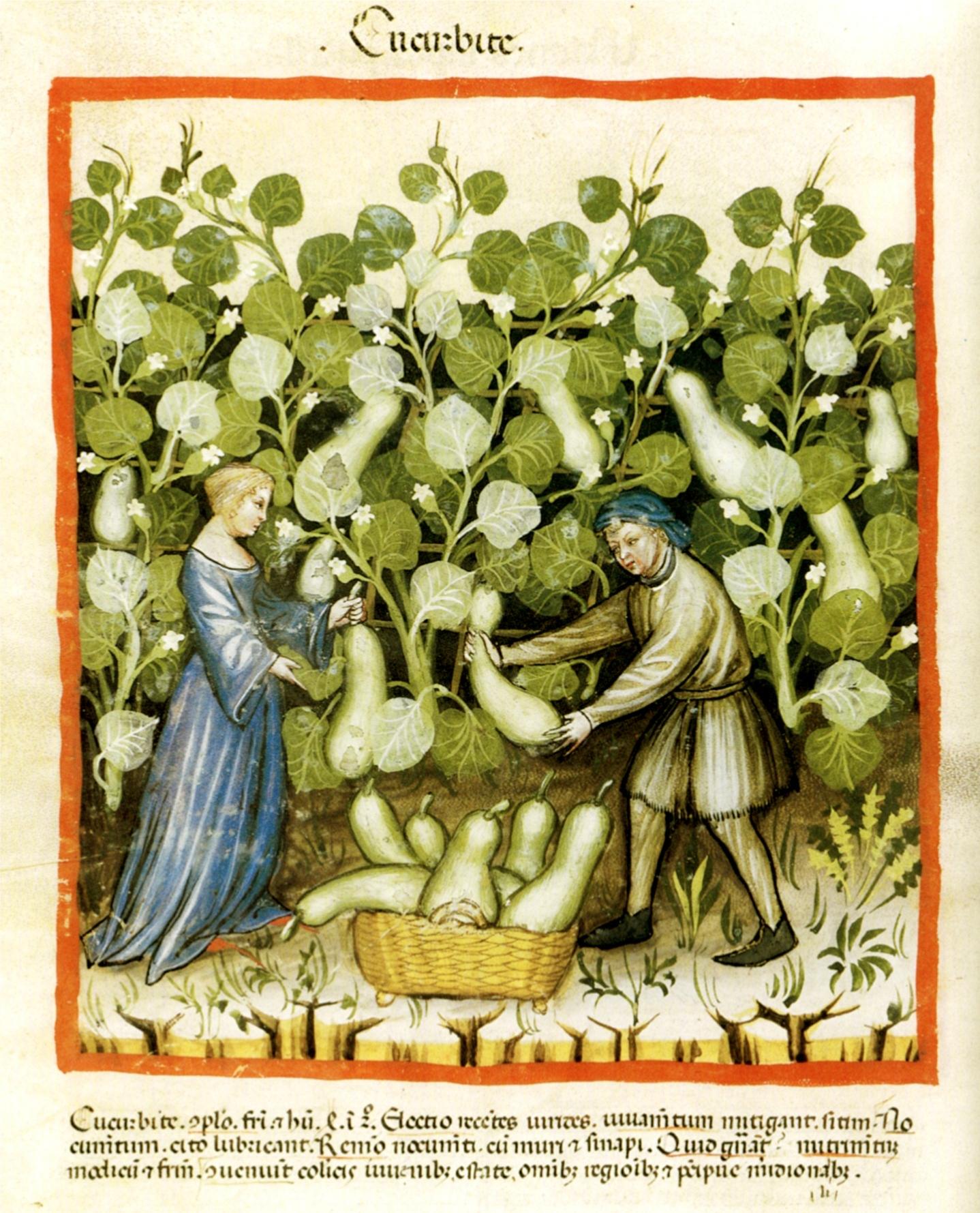 © BNF - département des manuscrits, Latin 9333, fol.19v.
