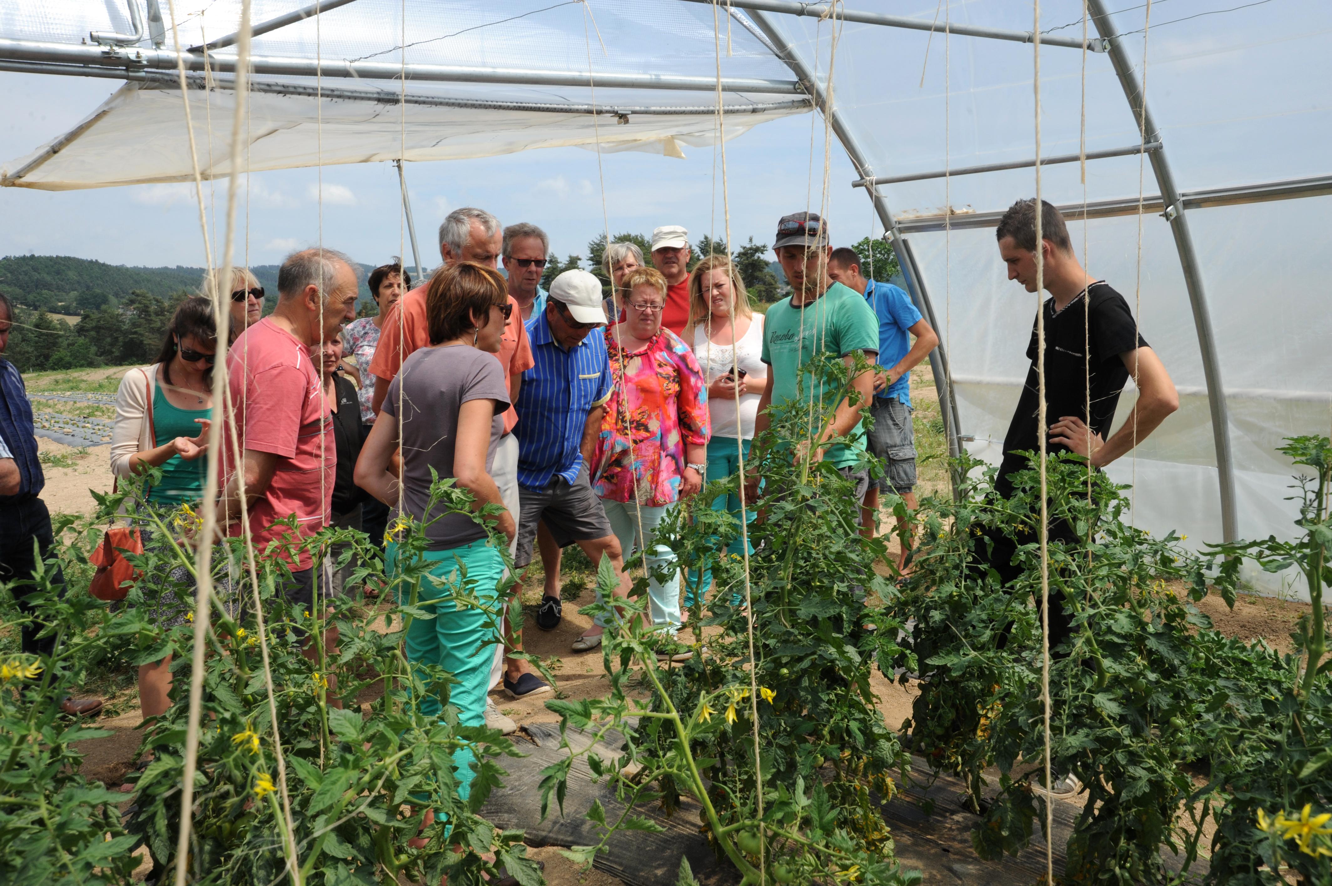 Les jardins de cocagne un lieu une association deux for Les jardins de cocagne