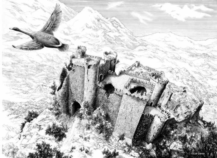 Lük DEMA Chêteau et oiseau