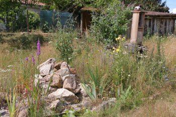 Jardin 1 web